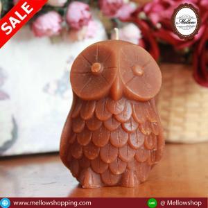 Big Owl [นกฮูกใหญ่]