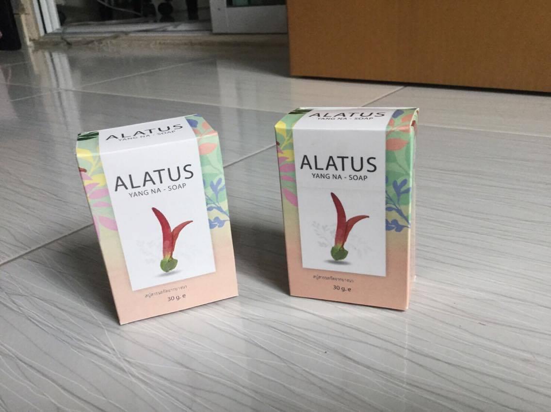 สบู่อาลาทัช (Alatus) สบู่ยางนา