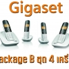 Gigaset Virtual PBX Package B