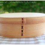 Original Oval Shiraki Bending magewappa bento box กล่องข้าวญี่ปุ่นวงรีสีไม้ 1 ชั้น