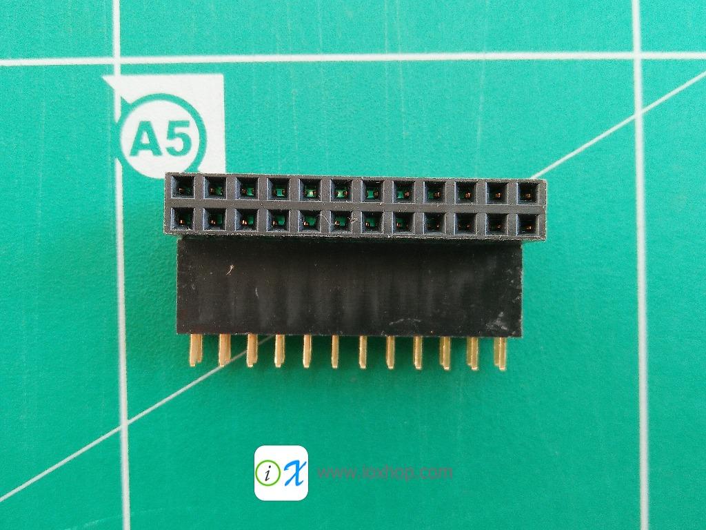 2x12 pin Female Header