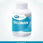 ดูแลสมอง ด้วยแปะก๊วย ดีเอชเอ และเลซิติน ด้วย จิโลแม็กซ์ (GILOMAX)