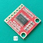 OEP20W 20W Class D Mono Amplifier Module